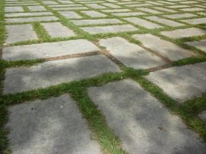 patio-255057_640